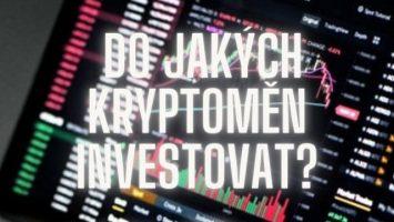 Do jakých kryptoměn investovat?